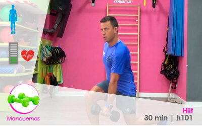 Hiit – h101